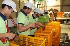 Inauguration de l'usine de transformation de fruits le plus grande du Nam Bo Occidental