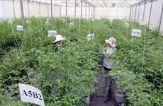L'industrie agroalimentaire, nouvelle manne pour les entreprises étrangères