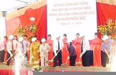 Une femme vietnamienne honorée par la FAO