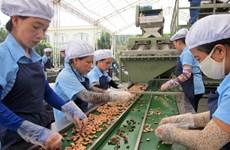 Binh Phuoc (Vietnam) et Champassak (Laos) coopèrent dans l'agriculture