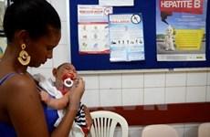 Les Philippines confirment  trois nouveaux cas de virus Zika
