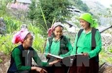 Les minorités ethniques représentent 14,6 % de la population du Vietnam