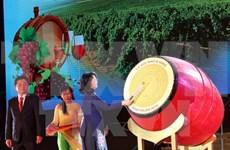 Ouverture de la Fête de la Vigne et du Vin - Ninh Thuan 2016