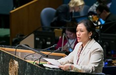 Le Vietnam appelle à la poursuite des aides internationales pour le développement
