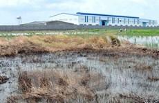 L'Allemagne partage ses expériences en matière de dépollution des sols contaminés aux métaux lourds