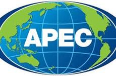 Sommet de l'APEC 2016 : le Vietnam renforce son intégration internationale