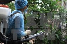 De nouveaux cas de Zika détectés à Ho Chi Minh-Ville et à Ba Ria-Vung Tau
