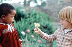 Tolérance: Le plus beau cadeau de la vie