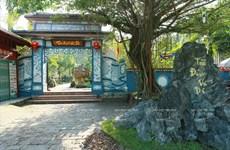 Trà Dinh Vu Di, un salon de thé original de Huê
