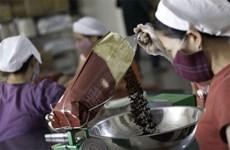 Tata Coffee prévoit de créer une usine de café instantané au Vietnam