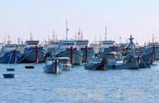 Mise en chantier d'une zone de mouillage pour les bateaux de pêche sur l'île de Phu Quy