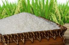 Le riz vietnamien à l'honneur