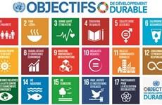 Développement durable : de l'engagement à l'action
