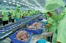 La Chine, marché cible pour les pangasius du Vietnam en 2017