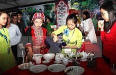 Festival du thé bio à Hà Giang