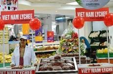 Emirats arabes unis: un débouché à fort potentiel pour les marchandises vietnamiennes
