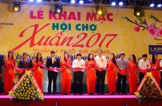 Ouverture de la foire printanière 2017 de Da Nang