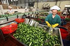 Les exportations végétales en pleine croissance