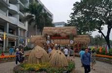 Des foires printanières aux fleurs à Ho Chi Minh-Ville