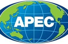 APEC 2017: la Douane vietnamienne sera chargée d'organiser ddifférentes activités