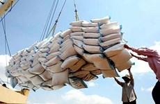 Le Vietnam continue de vendre 1,5 million de tonnes de riz par an aux Philippines