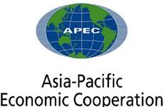 Les contributions actives du Vietnam à l'APEC