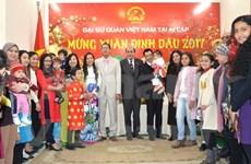 La diaspora vietnamienne accueille le Têt traditionnel dans différents pays