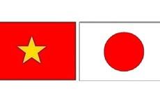 Le nombre de travailleurs vietnamiens au Japon augmente