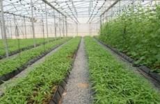 Dak  Nông lance un appel aux investisseurs dans le tourisme, l'agriculture et la sylviculture