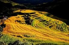 Yên Bai: Destination phare du Nord-Ouest