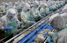 Vietnam-Bruneï: Objectif  500 millions de dollars d'échanges commerciaux en 2025