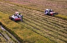 Avenir de la chaîne d'approvisionnement agricole du delta du Mékong