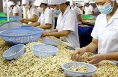 La filière de la noix de cajou vise 3,3 milliards de dollars d'exportation