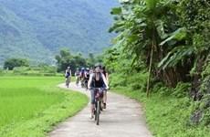 L'Asie du Nord-Est, premier marché touristique du Vietnam ce 1er semestre