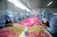 Noix de cajou : privilégier la qualité à la quantité