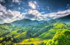 Le journal américain Thrillist suggère 12 expériences pour explorer le Vietnam