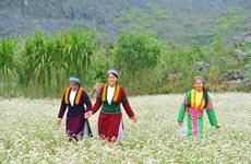 La province de Ha Giang attend l'essor de son tourisme