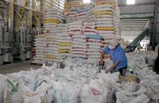 Bond des exportations de riz en Chine