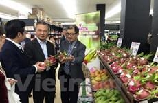 «Journée des pitayas du Vietnam» en Australie