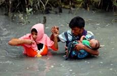 Myanmar et Bangladesh se coordonnent pour rapatrier les Rohingyas