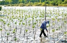 Changements climatiques : la Finlande assiste le Vietnam
