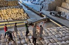 Can Tho : bons signes pour l'export du riz à l'étranger