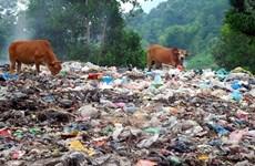 Le Vietnam lance une ligne téléphonique pour signaler les pollutions
