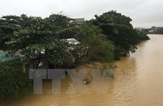 Aides aux sinistrés des catastrophes naturelles au Vietnam