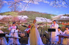 Clôture de la journée sud-coréenne à Quang Nam