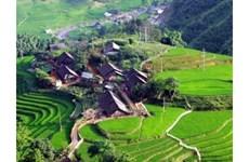 La vogue du tourisme « homestay » à Sa Pa