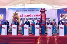 Mise en chantier du plus grand centre de transformation de fruits et légumes au Vietnam