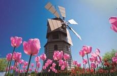 Pays-Bas, marché à l'export potentiel des entreprises vietnamiennes