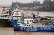 Le Japon offre des lampes à LED aux bateaux de pêche de Quang Tri