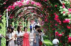 La Fête des roses de la Bulgarie fait son retour à Hanoï